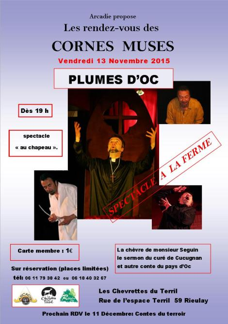 affiche 2 nov2015 Rieulay