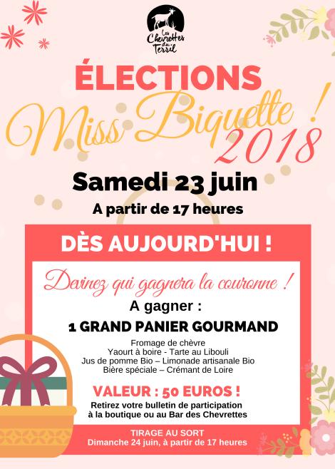 Affiche Miss Biquette